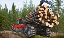 2Сруб дома и заготовка лесного материала.