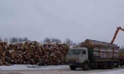 Складирование леса